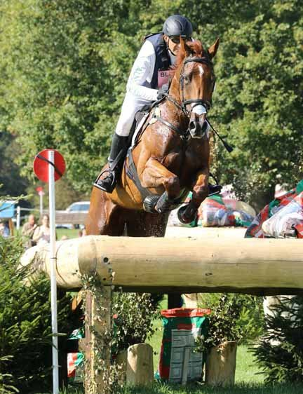 Blenheim International 2015