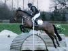 Bill & Dylan, Arena Eventing, February 2016