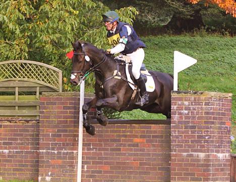 Harry at Weston Park (2)