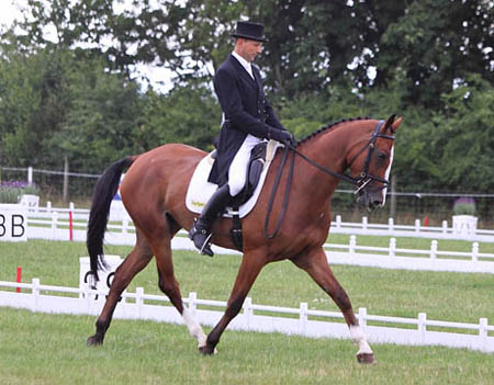 Coco at the Festival of British Eventing