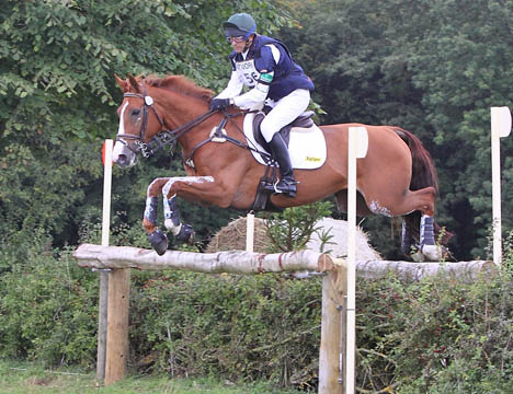 Figgy at Little Gatcombe