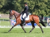 Bill & Womble at Blenheim: Photo Fiona Scott-Maxwell
