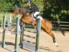 Bill Levett and This One's on You, Bicton Arena International