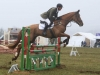 Gatcombe (1), March 2015