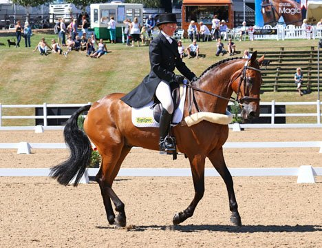 Ballymore Rich Cat, Hartpury 2016