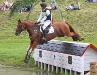 Hip at Gatcombe 2008