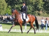 Blenheim 2012