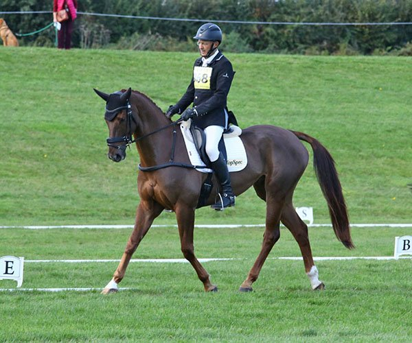 Bicton Arena International, October 2019