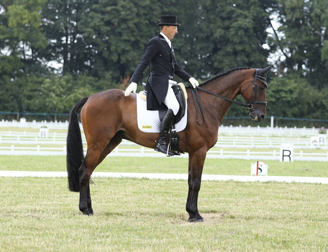 Festival of British Eventing 2014