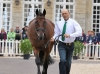 Bill Levett and Shannondale Titan, Trot Up, WEG Normandie, 2014