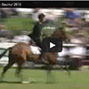 Saumur 2013 video