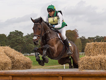 Bill Levett of Australia riding Shannondale Titian taking part in the Cross Country  phase of the CCI Four Star Etoiles De Pau International Horse Trials on Sat 24th October 2015
