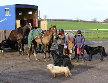 Levetts around the lorry, Swalcliffe, January 2016