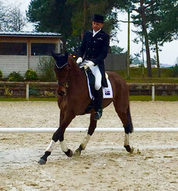 FontainebleauDressage